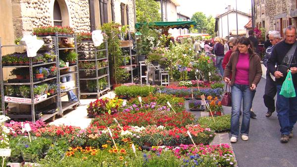 V nement foire aux fleurs et plantes rares dimanche 15 mai 2016 - Grossiste fleurs coupees pour particulier ...